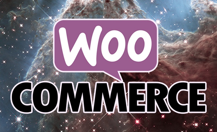 Using WooCommerce